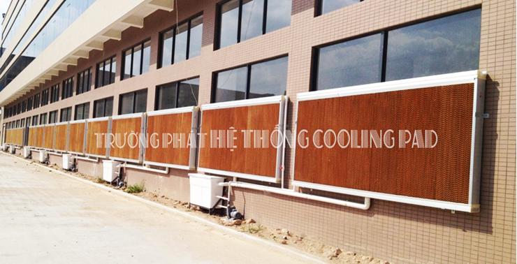 tấm làm mát cooling pad Trường Phát